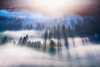 Dreamy awakening